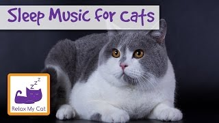 Sleep Music for Cats and Kittens! Calm your Cat and Send them into Peaceful Sleep