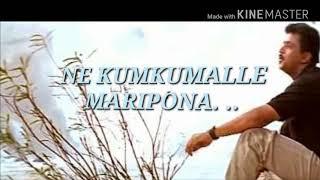 Nellori nerajana song lyrics from oke okkadu movie