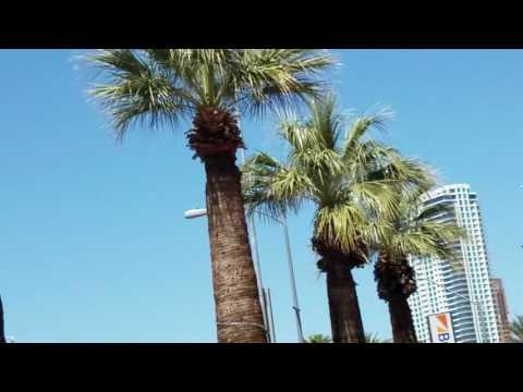 Las Vegas Luxury Cars Rental