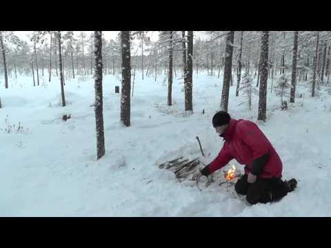 Vinter i svensk taiga : Winter in the Swedish Taiga
