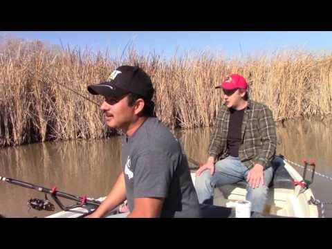 Blue Catfish Fishing - Trinity River from YouTube · High Definition · Duration:  10 minutes 26 seconds  · 2,000+ views · uploaded on 11/23/2016 · uploaded by Pole Bender