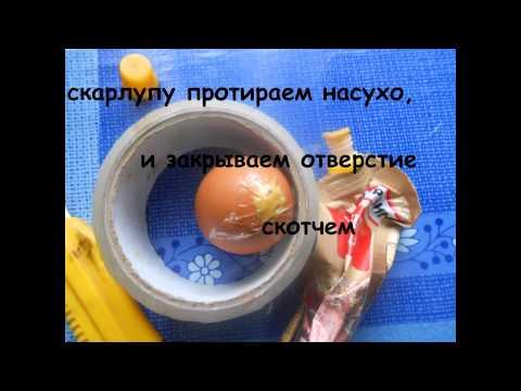 Отучаем несушку расклевывать яйца