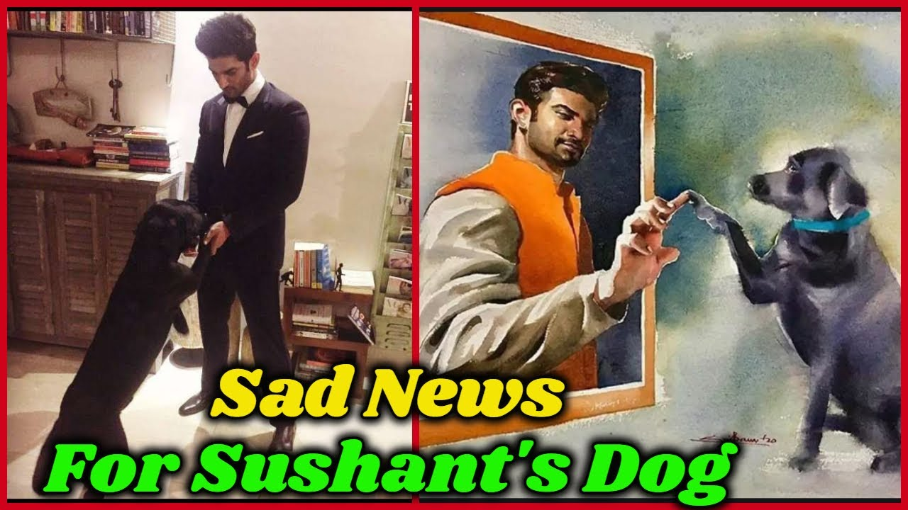 "Very Sad News For Sushant Singh Rajput's Dog ""Fudge"""