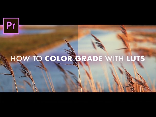 How to INSTANTLY Color Grade your footage using LUTs! (Pre Load, Correction, & Grading tutorial!)