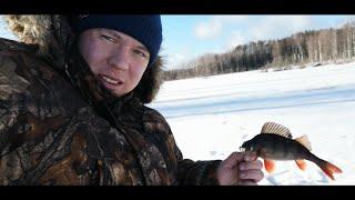 Поиск крупного окуня на Карельской лесной ламбе в глухозимье.