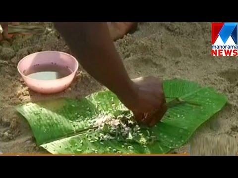 Vavu bali in north kerala| Manorama News