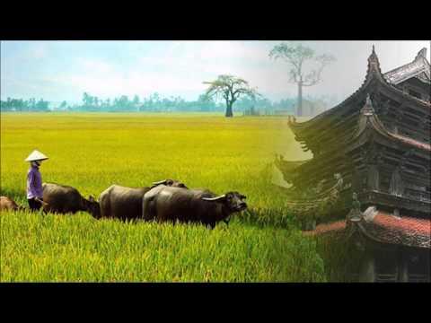 Những bài hát hay nhất về Thái Bình