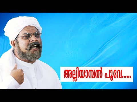 Mammootty Hit Vol 03  Malayalam Non Stop Movie Songs |   K J Yesudas | S Janaki | Vani Jayaram |