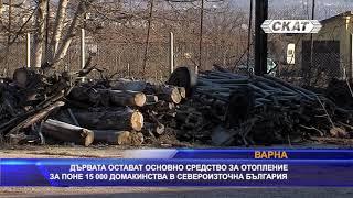 Дървата остават основно средство за отопление за близо 15000 домакинства в Североизточна България