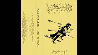 Hole Dweller - Flies The Coop II (2020) (Dungeon Synth, Fantasy Synth)