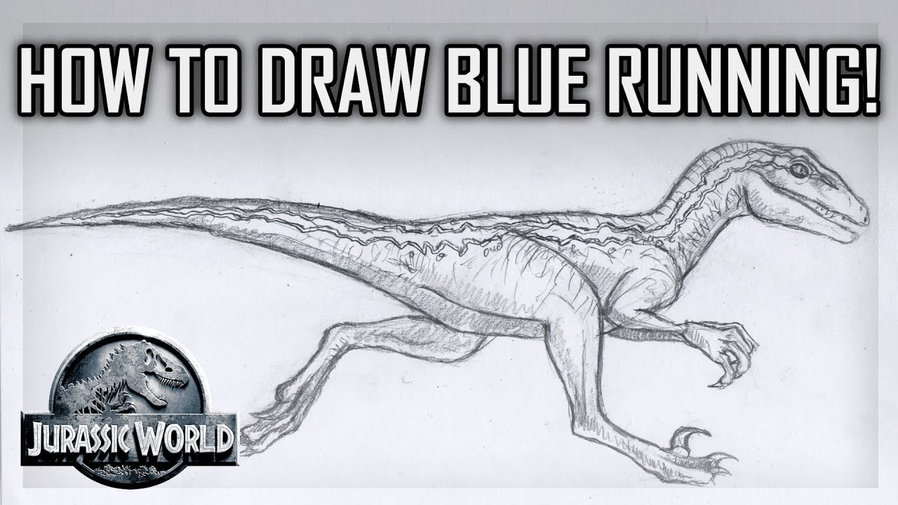Tutorial How to Draw Blue the Velociraptor Running