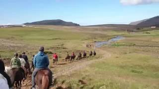 Riding on Iceland