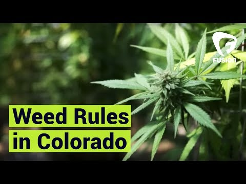 The Do's And Don'ts Of Smoking Weed In Colorado
