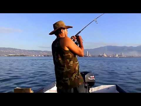Fishing With Live Bait In Jamaica