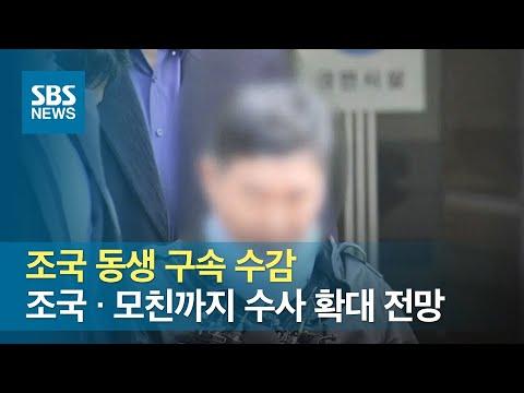 조국 동생 구속 수감…조국 · 모친까지 수사 확대 전망 / SBS