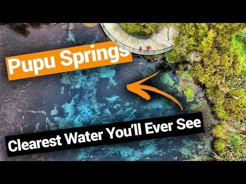 Te Waikoropupu Springs in Golden Bay - New Zealand's Biggest Gap Year – Backpacker Guide New Zealand