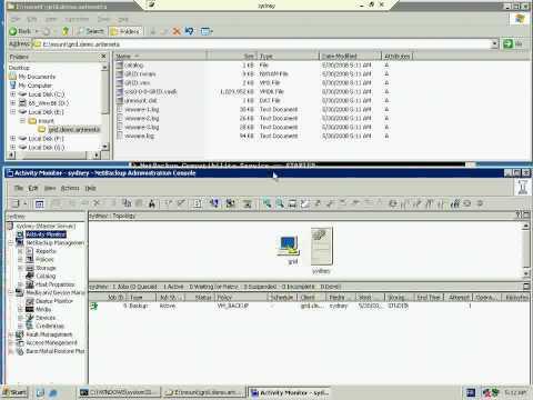 NetBackup VCB BACKUP Symantec