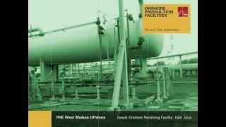 ONSHORE PRODUCTION FACILITIES - Pertamina Hulu Energi WMO - Gresik ORF #1