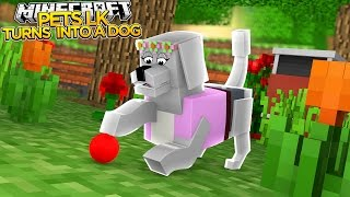 Minecraft Pets - LITTLE KELLY TURNS INTO A DOG!