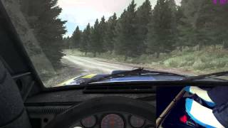 Dirt Rally - A Stroll in the woods - Pedal Cam