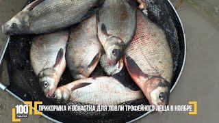 Прикормка и оснастка для ловли трофейного леща в ноябре. Авторский Видео блог '100 рыбалок'. 3 серия