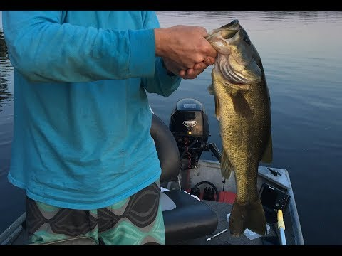 Chickahominy Lake Fishing - Overview And Tips