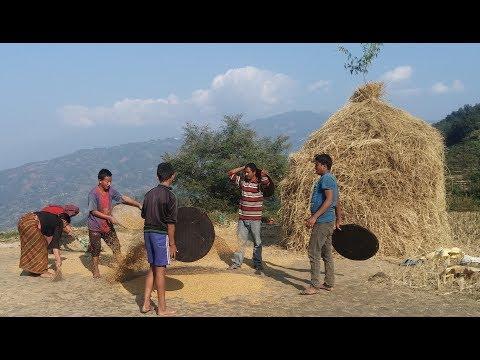 New Documentary - Socio-Economic Life of Rural Area//Yuma