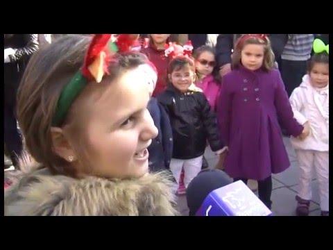 ТВМ Дневник 26.12.2015