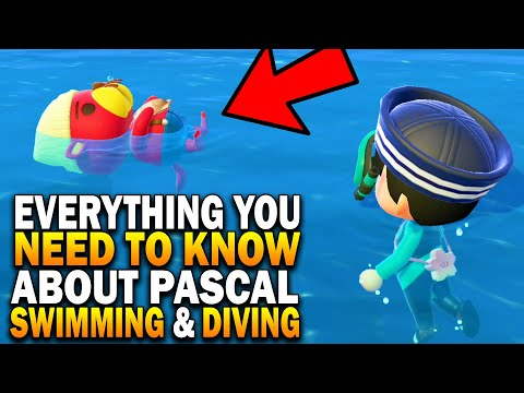 Everything You Need To Know About Pascal, Swimming & Diving! Animal Crossing New Horizons Update