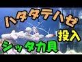 (70) ハタタテハゼとシッタカ貝を投入 2017/03/24 【Aquarium】