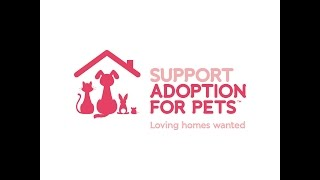 Applying for a Grant from Support Adoption For Pets