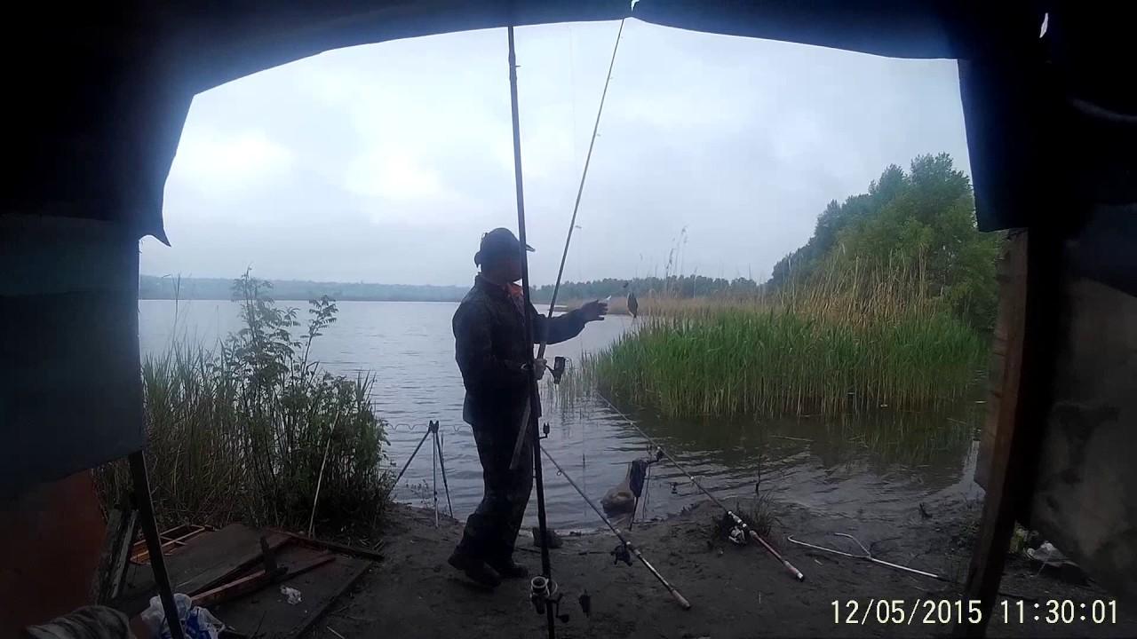 рыбалка в мае на карпа и карася видео