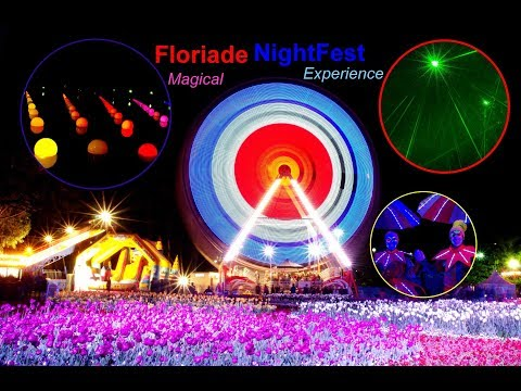 Floriade, Nightfest, Floriade nightfest, Tulips, Tulip, Canberra, Flowers, Night, Spring
