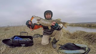 Щука на спининг весной Рыбалка с берега Ета приманка меня порадовал РЫБАЛКА 2020