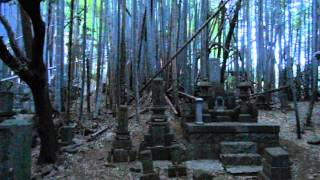 Hidden Cemetary in Japanese Forest