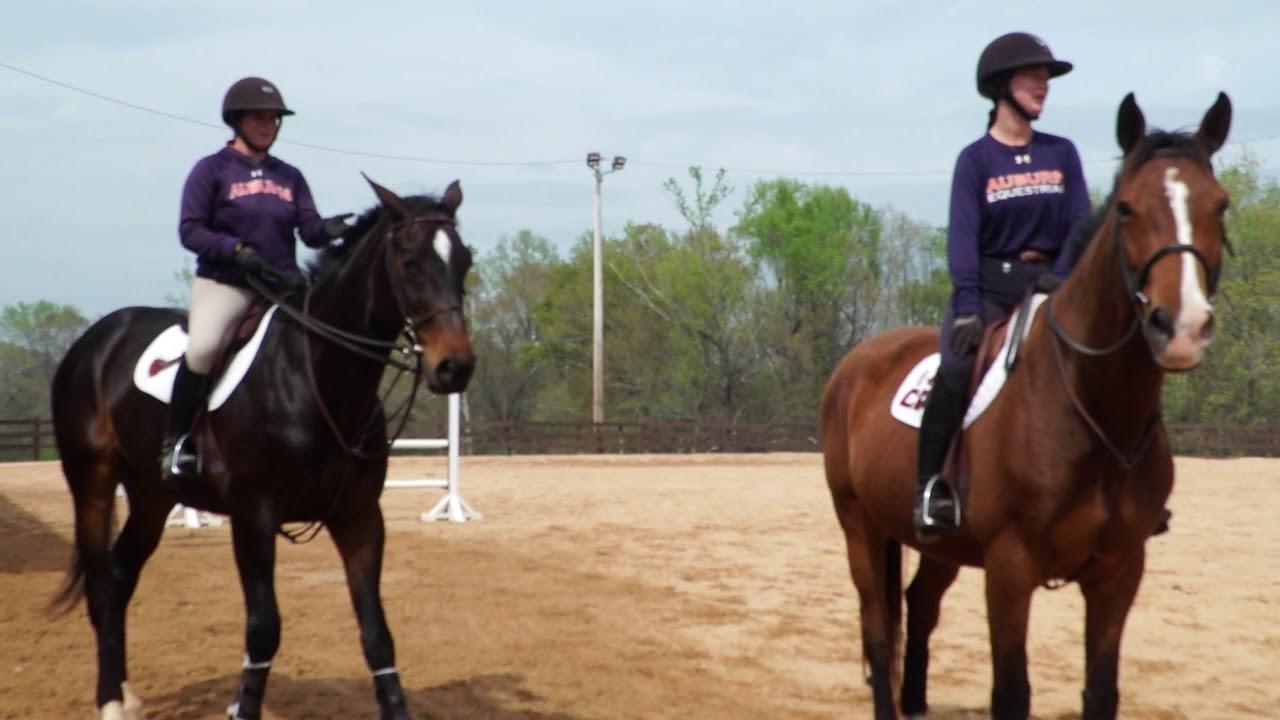 Auburn Equestrian Haley Iannotti Mic D Up Youtube