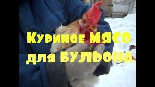 Заготовка ЕДЫ на МЕСЯЦ  Куриное мясо для бульона  Наша жизнь в деревне