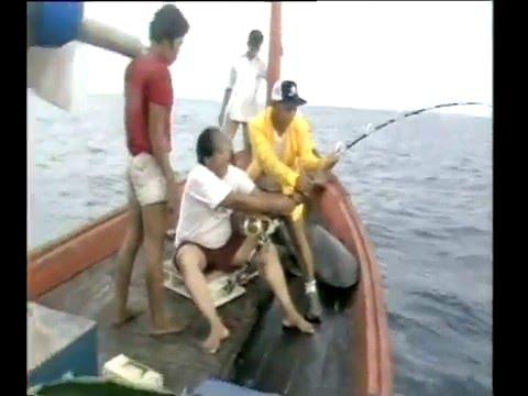 สารคดีส่องโลก ตอน ฉลามกินคน