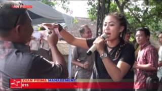 Video Ngadu Telu - Diana sastra Live Walaharcageur download MP3, 3GP, MP4, WEBM, AVI, FLV Oktober 2018