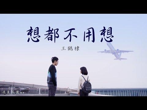 王鶴棣 - 想都不用想【電視劇流星花園】插曲 動態歌詞
