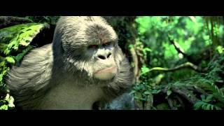TARZAN Extrait Les animaux de la jungle