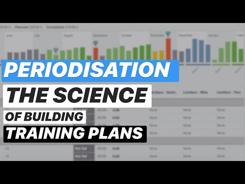 PERIODISATION FOR ENDURANCE ATHLETES: The Theory of Building Endurance Training Plans