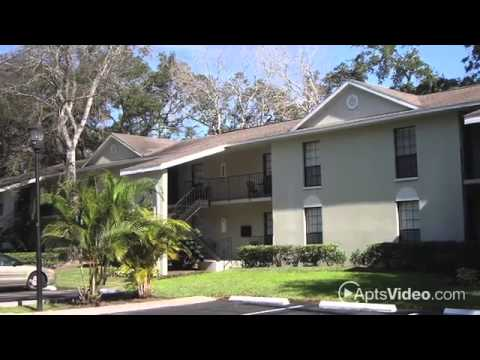 grand oaks of tampa bay apartments in tampa fl forrent com youtube