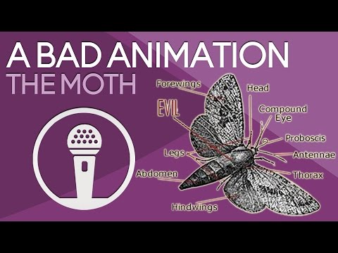 A Bad Animation | The Moth