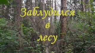 Заблудился в лесу(Находясь в очередном походе в лес, вышел на низменность... На карте место значилось как обыкновенный лес,..., 2012-10-07T16:55:36.000Z)