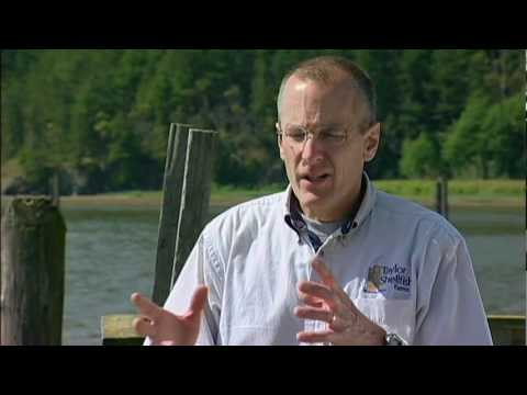 Green Careers: Sustainable Futures - Taylor Shellfish Farm Sequence