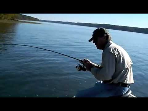 Fall fishing pickwick lake youtube for Pickwick lake fishing report