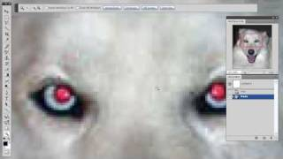 Photoshop Tutorial | How To Remove Red Eye