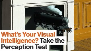 Take This Perception Test to See How Visually Intelligent You Are | Best of