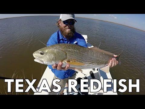 Fall Skiff Fishing | Galveston, Texas